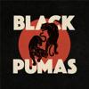 Black Pumas - Colors  artwork