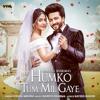 Naresh Sharma & Vishal Mishra - Humko Tum Mil Gaye artwork