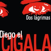 Diego el Cigala - Dos gardenias