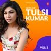 Hits of Tulsi Kumar Vol 2