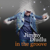 In the Groove - Jimmy Dludlu