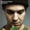 Gavin DeGraw - I Don't Want to Be artwork
