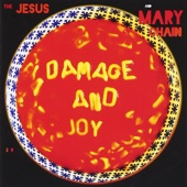 The Jesus and Mary Chain - Simian Split