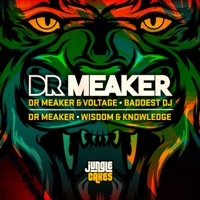 Baddest Dj - DR MEAKER - VOLTAGE