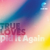 The True Loves - Did it Again