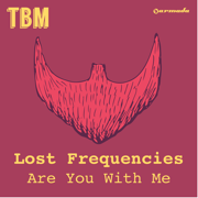 EUROPESE OMROEP   Are You With Me (Radio Edit) - Lost Frequencies