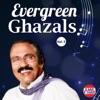 Evergreen Ghazals Vol 5