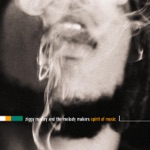 Ziggy Marley & The Melody Makers - Beautiful Day