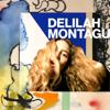 Delilah Montagu - Us portada