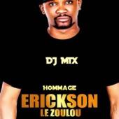 Hommage Erickson Le Zoulou artwork