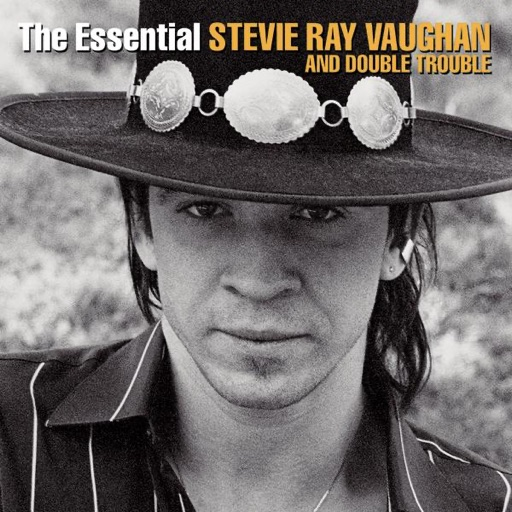 Art for The Sky Is Crying (Live) by Stevie Ray Vaughan & Double Trouble