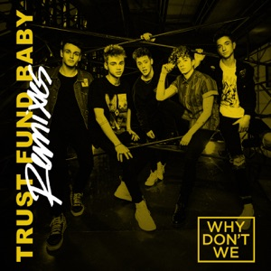 Trust Fund Baby (Remixes) - Single Mp3 Download