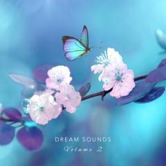 Dream Sounds, Vol. 2