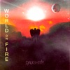 World On Fire Single