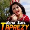 Khalg Zaliman Ma O Tha Juda Kavi Single