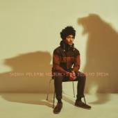 Skinny Pelembe - No Blacks, No Dogs, No Irish