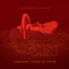 Someone I Used to Know - Zac Brown Band mp3