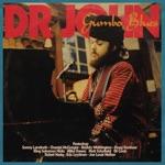 Dr. John - Tipitina feat. Matt Schofield