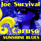 Joe Survival Caruso - Sunshine Blues
