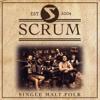 Scrum - Celebrate the Sun portada