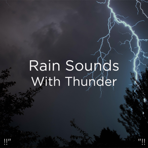 "Thunderstorms & Thunder Storms & Rain Sounds - !!"" Rain Sounds with Thunder ""!!"