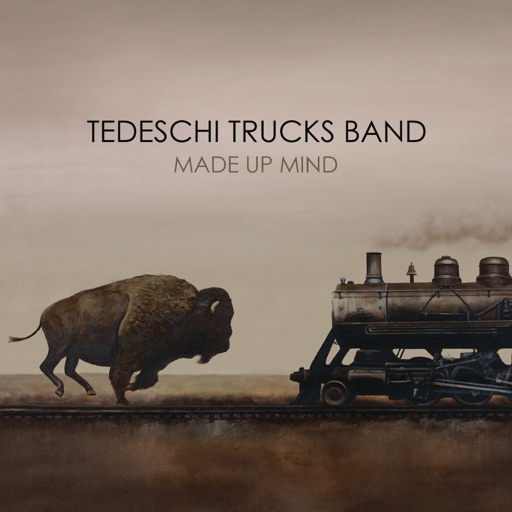 Art for The Storm by Tedeschi Trucks Band
