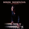 Derek Sherinian - The Phoenix  artwork