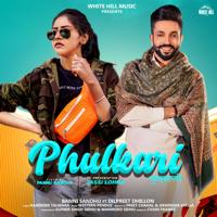 Phulkari (feat. Dilpreet Dhillon) - Single