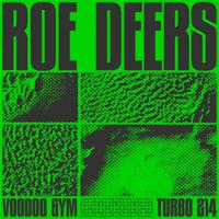 Roe Deers - Voodoo Gym - EP artwork