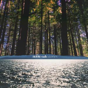 Noble Oak - Little Things Left Behind