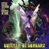 Little Steven - Summer of Sorcery feat The Disciples of Soul Album