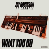 What You Do (feat. Example) artwork