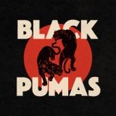 Black Pumas - Colors