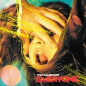 The Flaming Lips - Worm Mountain