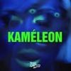 Rico & Miss Mood - Kaméleon artwork