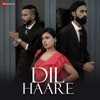 Dil Haare