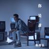 鄭俊弘 - 你是誰 (劇集《迷網》主題曲) 插圖