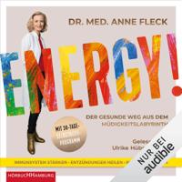 Anne Fleck - Energy!: Der gesunde Weg aus dem Müdigkeitslabyrinth - Mit 30-Tage-Selbsthilfeprogramm artwork
