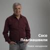 Soso Pavliashvili - Радовать artwork
