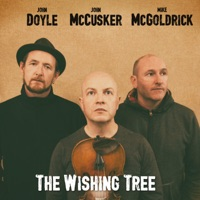 The Wishing Tree by Mike McGoldrick, John McCusker & John Doyle on Apple Music
