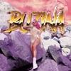 Buzina Remixes Single
