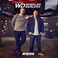 Télécharger Wheeler Dealers, Season 22 Episode 8