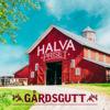 Halva Priset - Gårdsgutt artwork