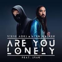 Are You Lonely - STEVE AOKI-ALAN WALKER-ISAK