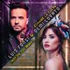 Luis Fonsi & Demi Lovato - Échame La Culpa (Not On You Remix) ilustración
