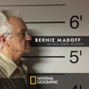 Bernie Madoff: In His Own Words wiki, synopsis