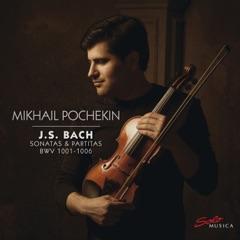 Violin Partita No. 2 in D Minor, BWV 1004: IV. Gigue