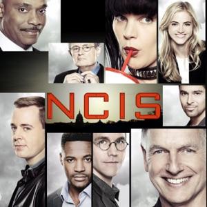 NCIS, Saison 15 - Episode 9