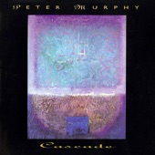 PETER MURPHY - Mirror to My Woman's Mind