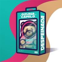 Descargar Despeinada - Ozuna & Camilo Mp3